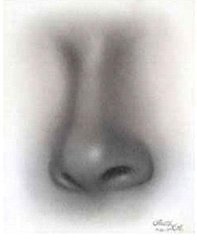krok 10 Kreslenie ženského nosu. Kreslenie ženského nosu. Untitled 10 copy
