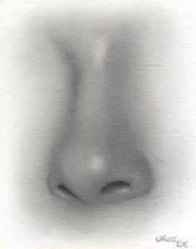 Kreslenie ženského nosu. Kreslenie ženského nosu. Untitled 7 copy