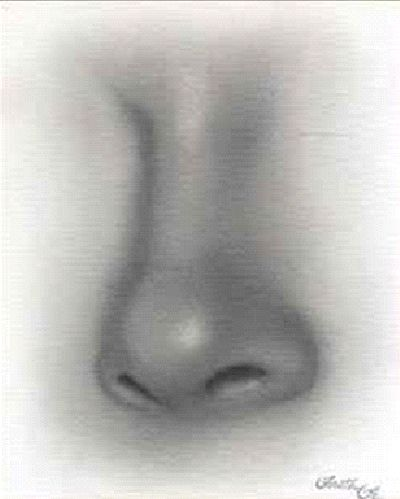 Kreslenie ženského nosu. Kreslenie ženského nosu. Untitled 8 copy