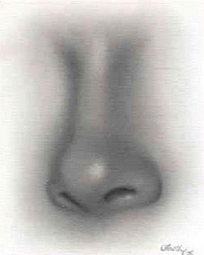 krok 9 Kreslenie ženského nosu. Kreslenie ženského nosu. Untitled 9 copy