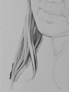 Kreslenie vlasov - podrobne. Kreslenie vlasov – podrobne. 13 Uk    ka kreslenia 224x300