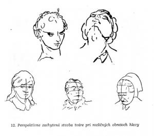 kreslenie ľudskej hlavy Kreslenie ľudskej hlavy spredu. Perspekt  va portr  tov 300x266