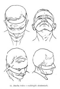 kreslenie ľudskej hlavy Kreslenie ľudskej hlavy spredu. Perspekt  vne skr  tenie tv  re 203x300