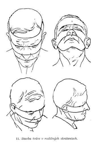 Kreslenie Portretov Kreslene Portrety