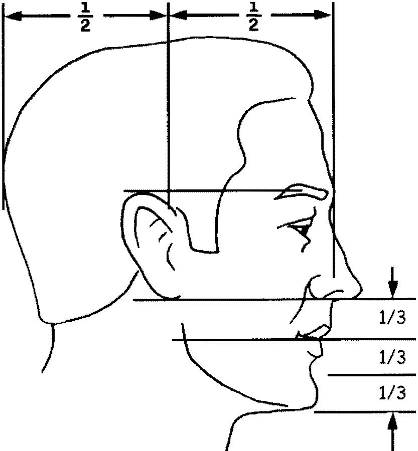Kreslenie hlavy z profilu. Kreslenie hlavy z profilu. Stavba tv  re z profilu