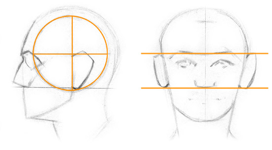 Kreslenie ľudského ucha. Ulo  enie ucha 1