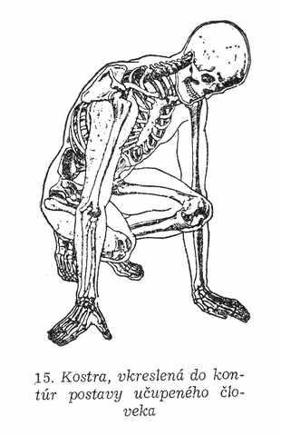 Kreslenie ľudskej postavy. Kreslenie ľudskej postavy. Kostra u  upen  ho   loveka