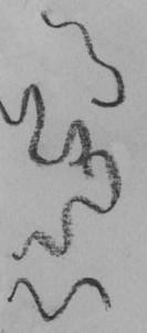 kučeravé vlasy 02- detail kreslenie kučeravých vlasov Kreslenie kučeravých vlasov. ku  erav   vlasy 02 detail