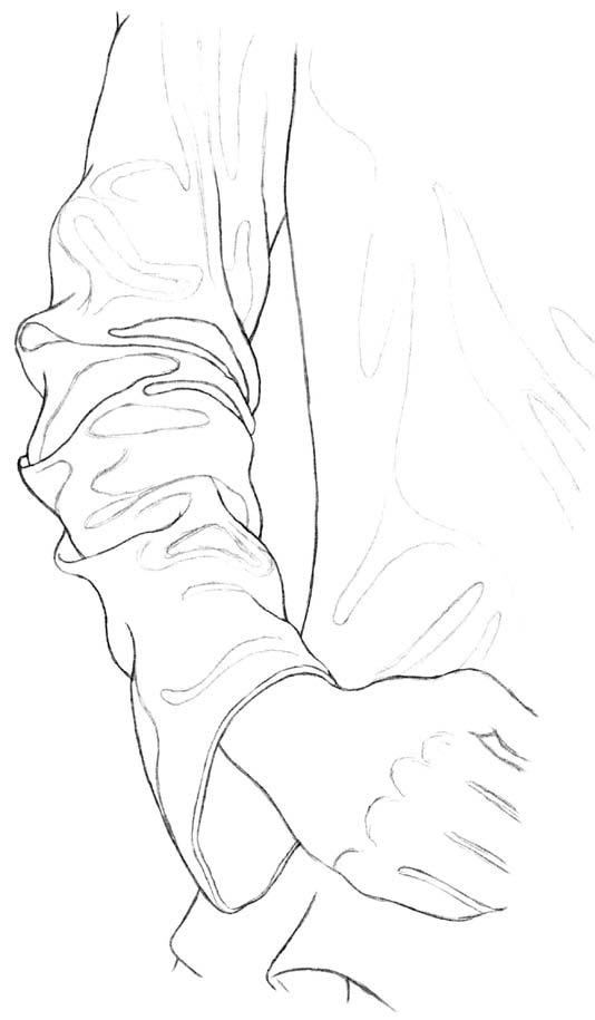 Kreslenie rukávu 7 kreslenie realistickej textílie Kreslenie realistickej textílie. Kreslenie ruk  vu 7