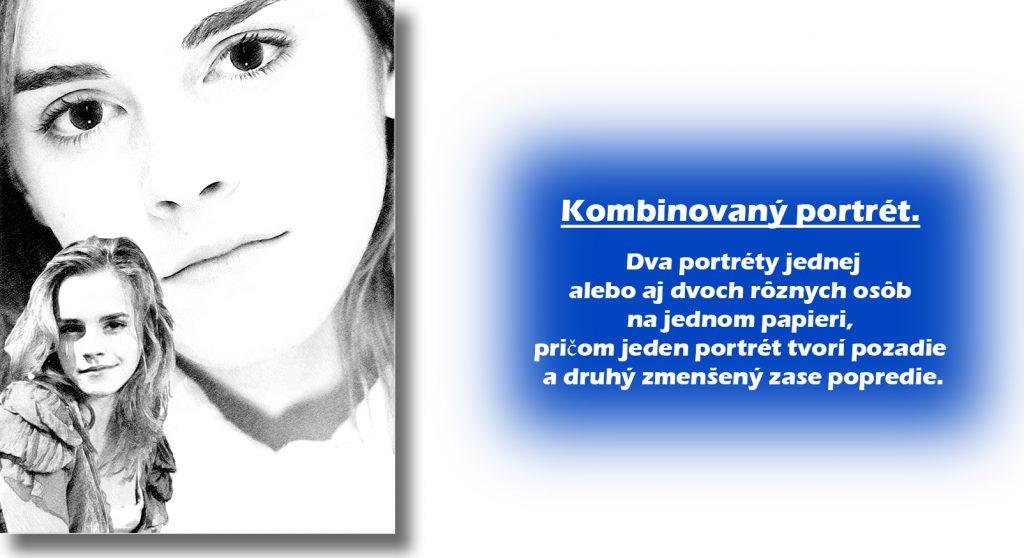 Kombinovaný portrét ceny realistických diel Ceny realistických diel. Kombinovan   portr  t